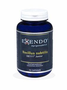 Bacillus subtilis DE111 Junior - 90 caps